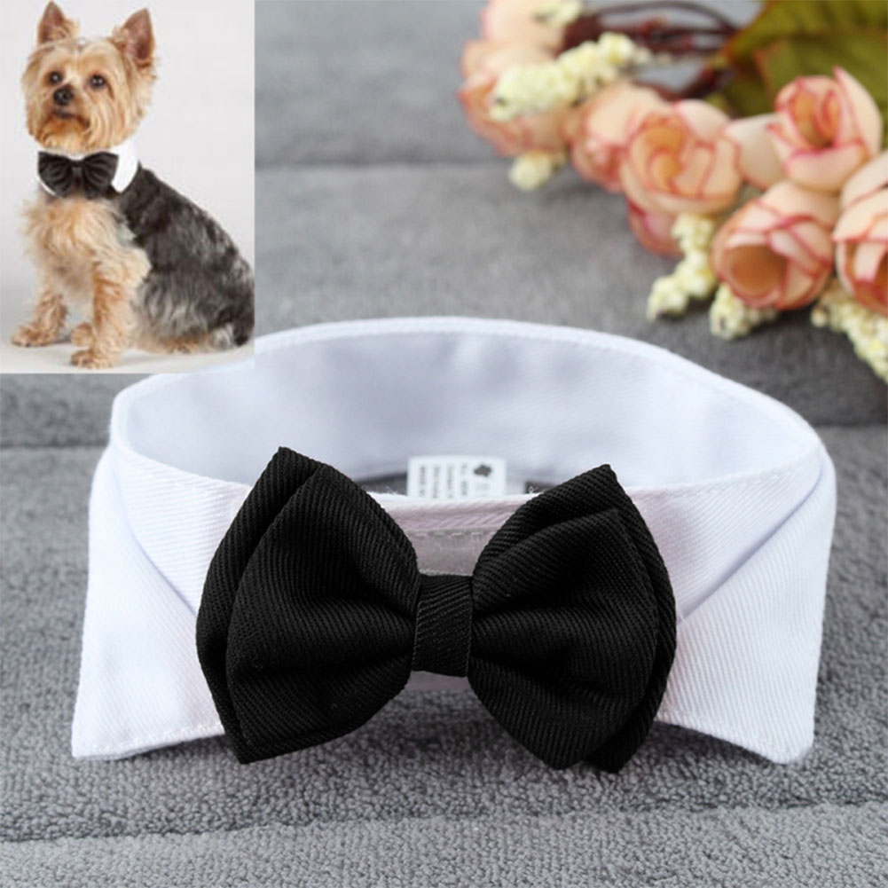Fashion Adjustable Bow Tie Cute Collar Necktie Bowknot for Pet Dog Cat Wedding Decor white