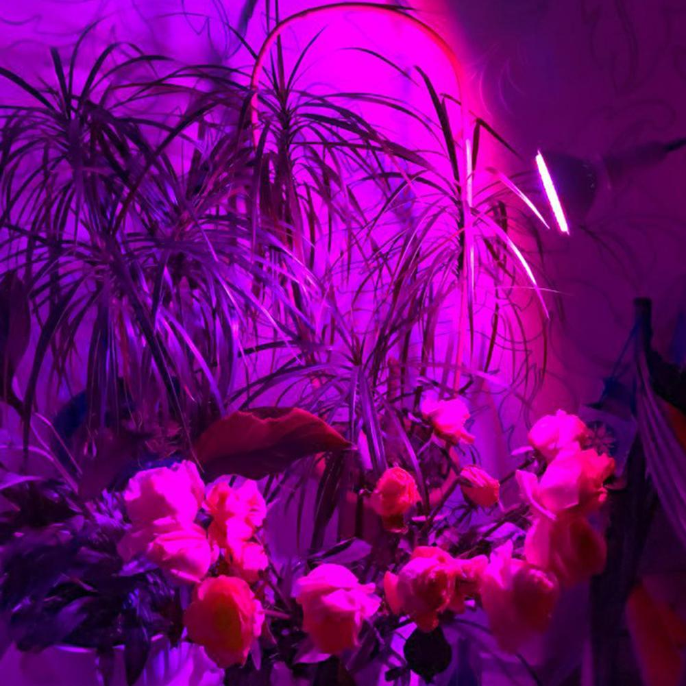 E27 110V 38 LEDs High Brightness Plant Grow Light for Indoor Garden Greenhouse Supplies Red blue light