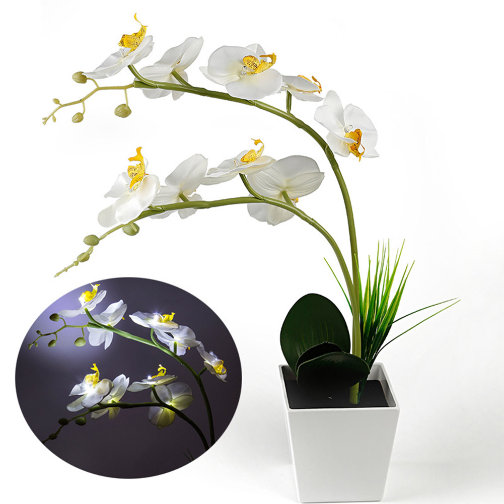 9LEDs Simulate Phalaenopsis Pot Lamp with White Light for Decoration White light