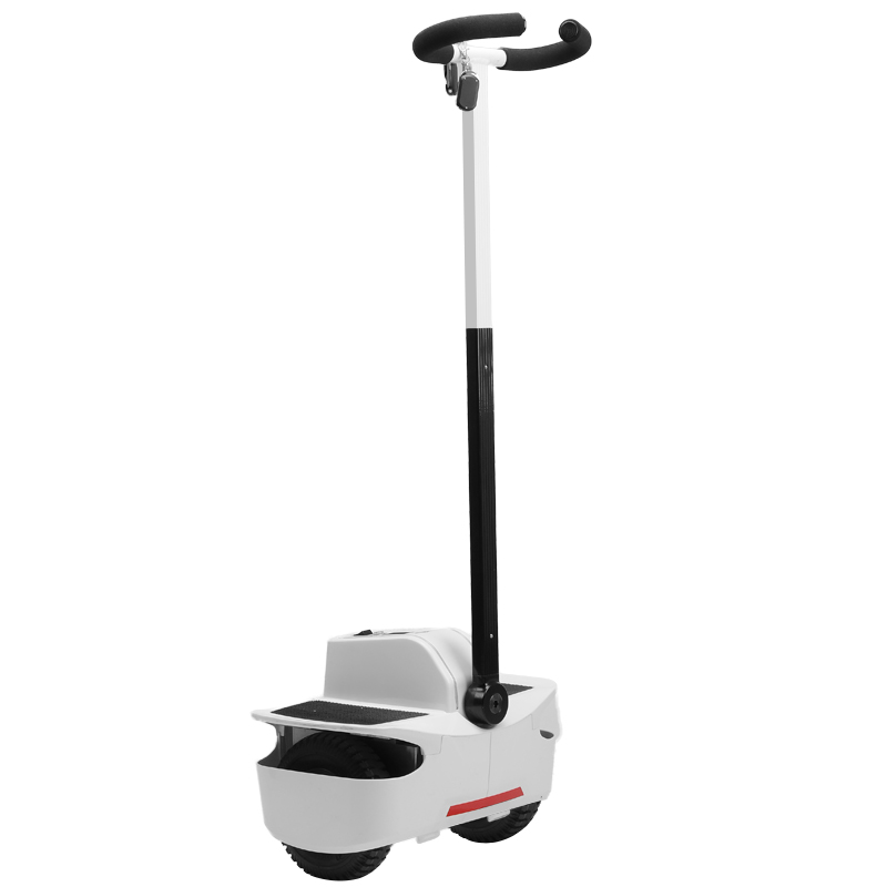 Mini Dual Wheel Self-Balancing Electric Vehic