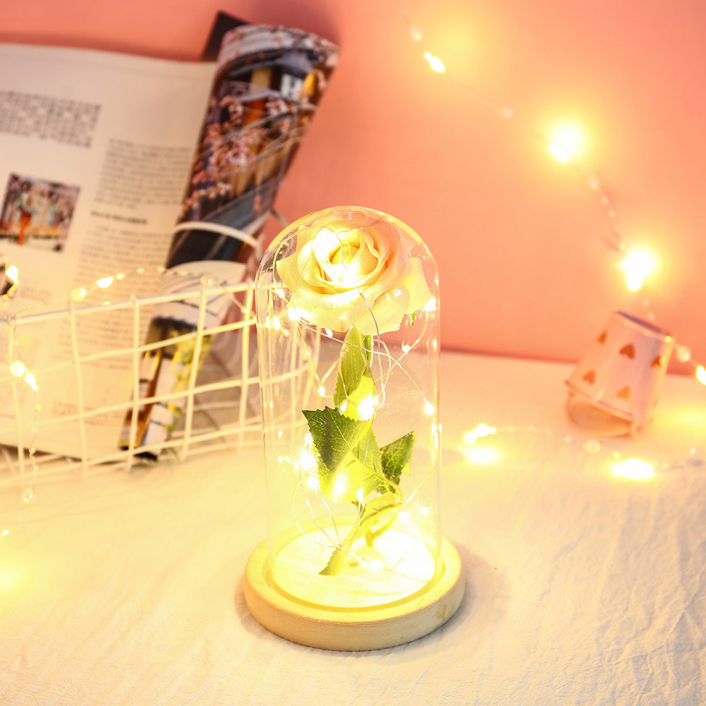 Glass Cover Rose Flowers LED Light String Gift Women Girls on Birthday Holiday Christmas Powered by Batteries Champagne powder