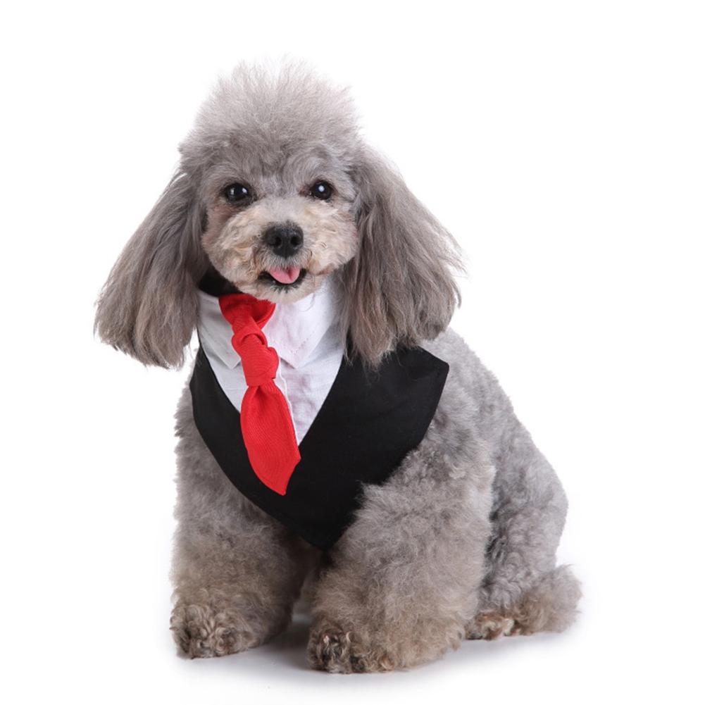 Pet Bib Saliva Suit Bowtie Tie Towel Scarf Dog Cat Spring Summer Clothes Puppy Supply black_L