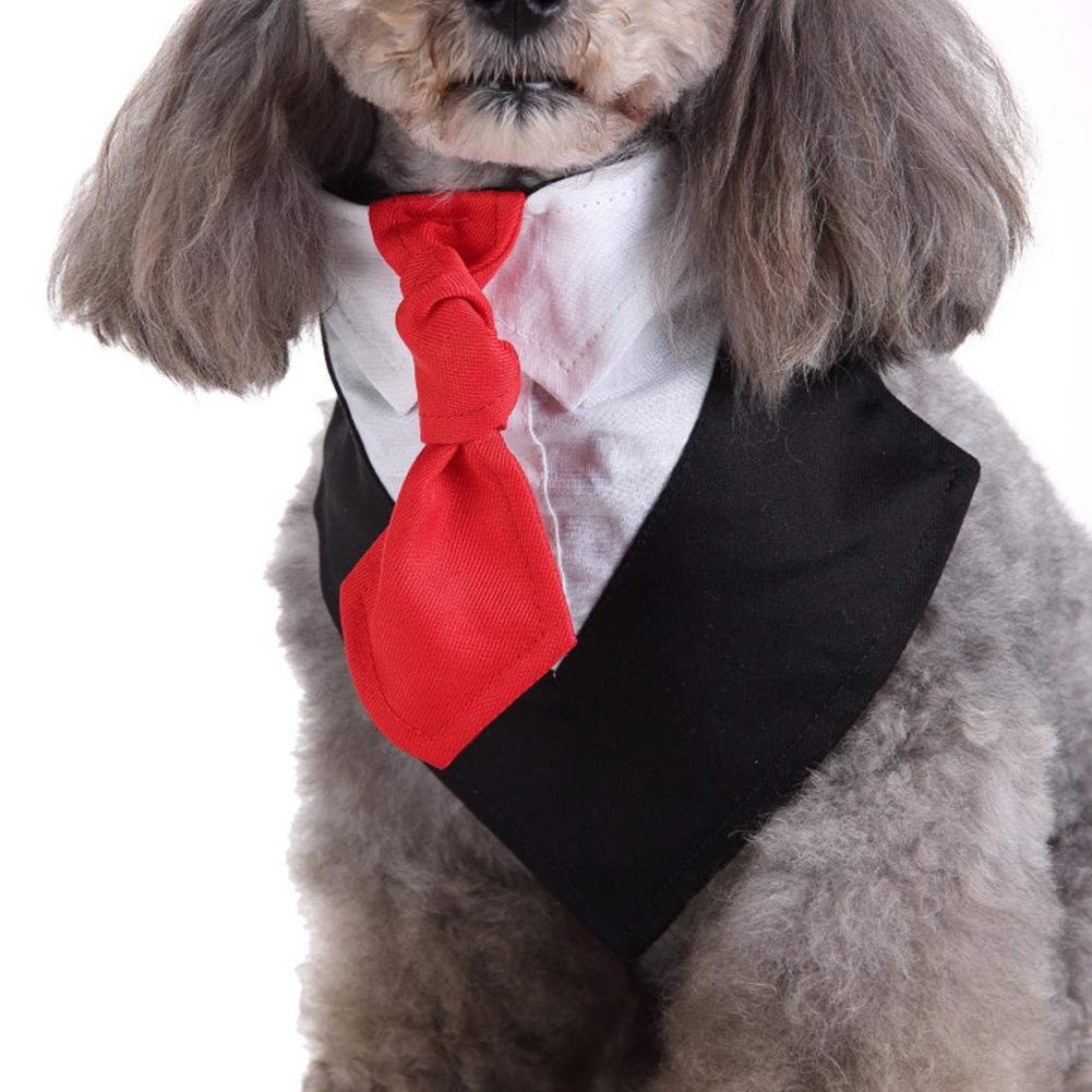 Pet Bib Saliva Suit Bowtie Tie Towel Scarf Dog Cat Spring Summer Clothes Puppy Supply black_M