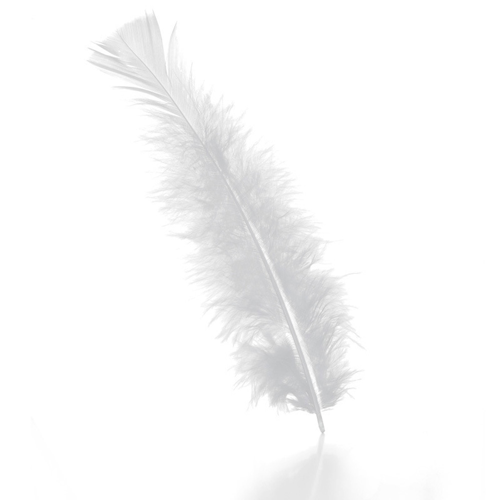 100pcs Colorful Turkey Feather Fluffy Wedding Dress DIY Jewelry Decor Accessories white_14cm
