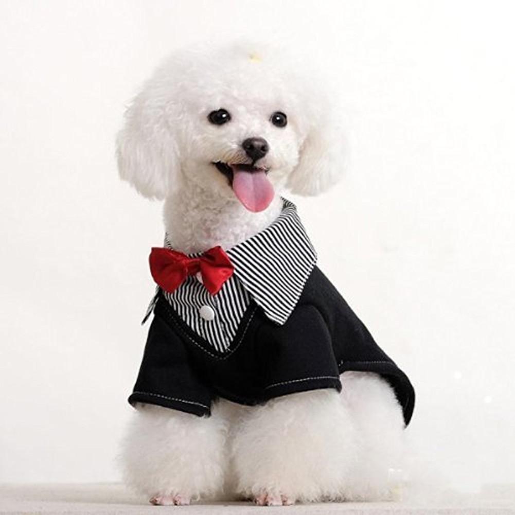 Adjustable Pet Bow Tie red