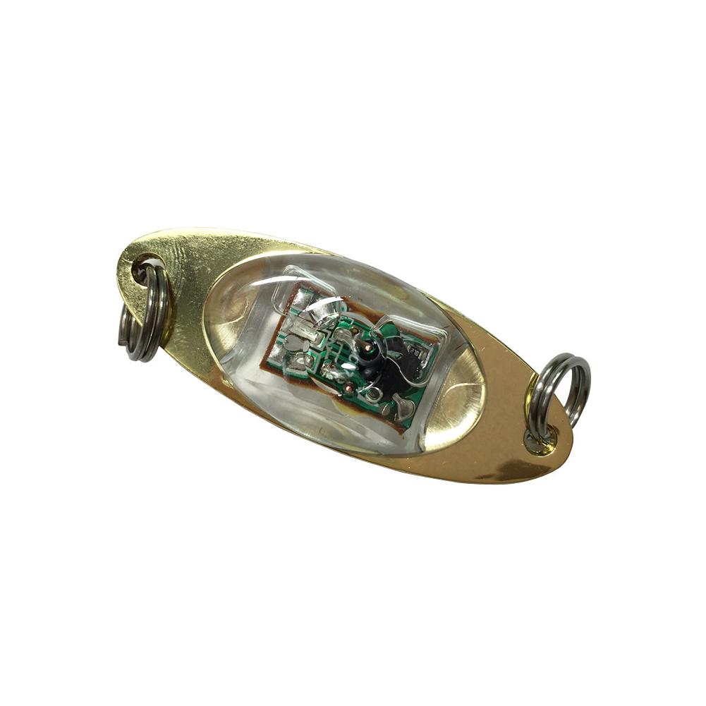 Outdoor Fishing Light Flash Lamp LED Deep Drop Underwater Eye Shape Fishing Squid Fish Lure Light green_10G