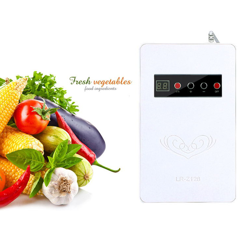 Home Multifunction Ozone Generator for Refrigerator Vegetable Meat Air Purify White American regulation 110V