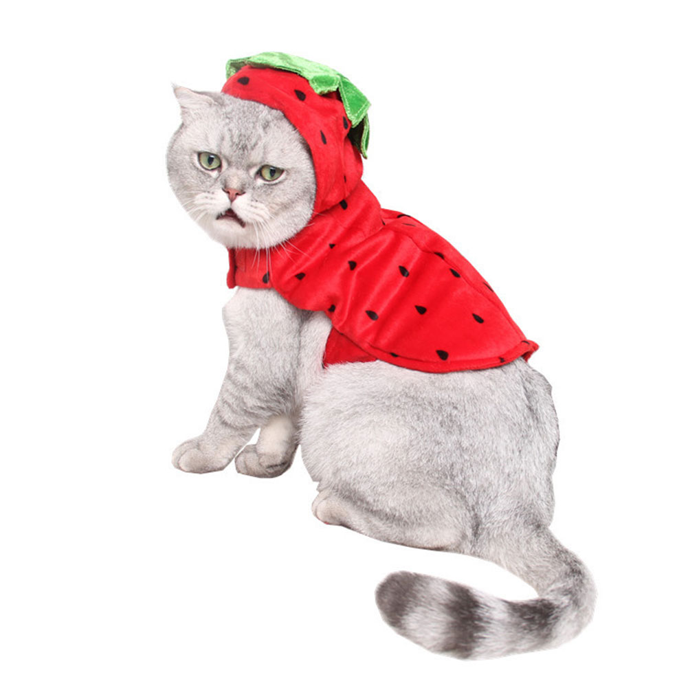 Red Strawberry Shape Costume Halloween Clothes for Party Wear red