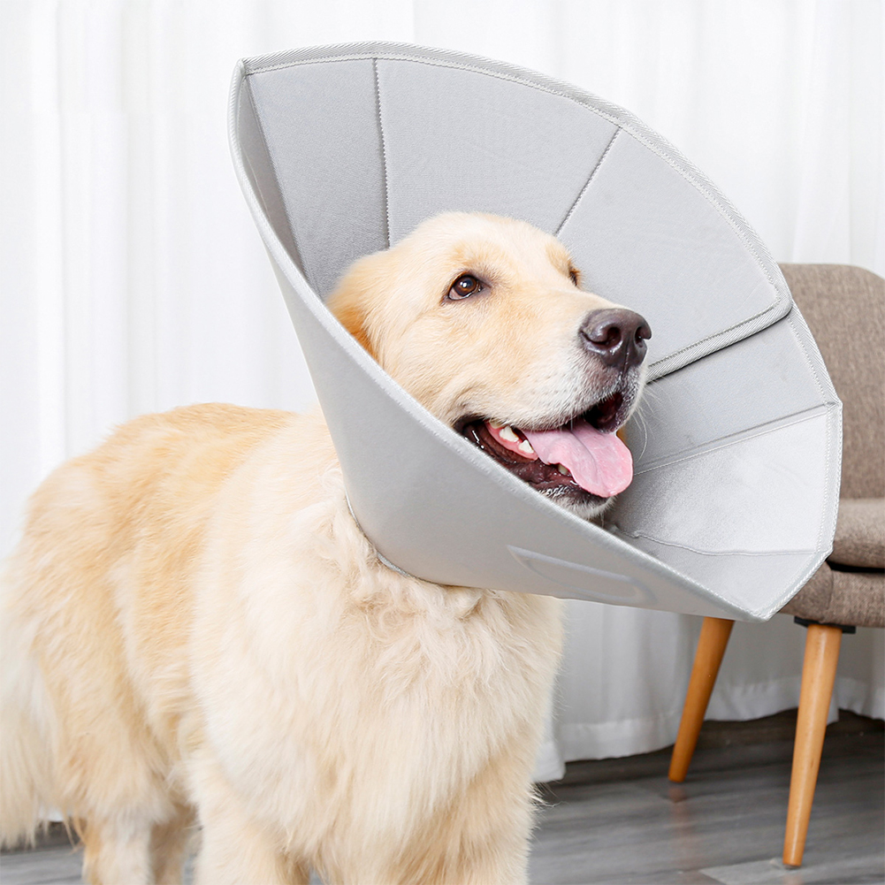 Collar Dog Cat Recovery Anti-Biting Ring Headgear for Protective Wound Pet Supplies gray_L