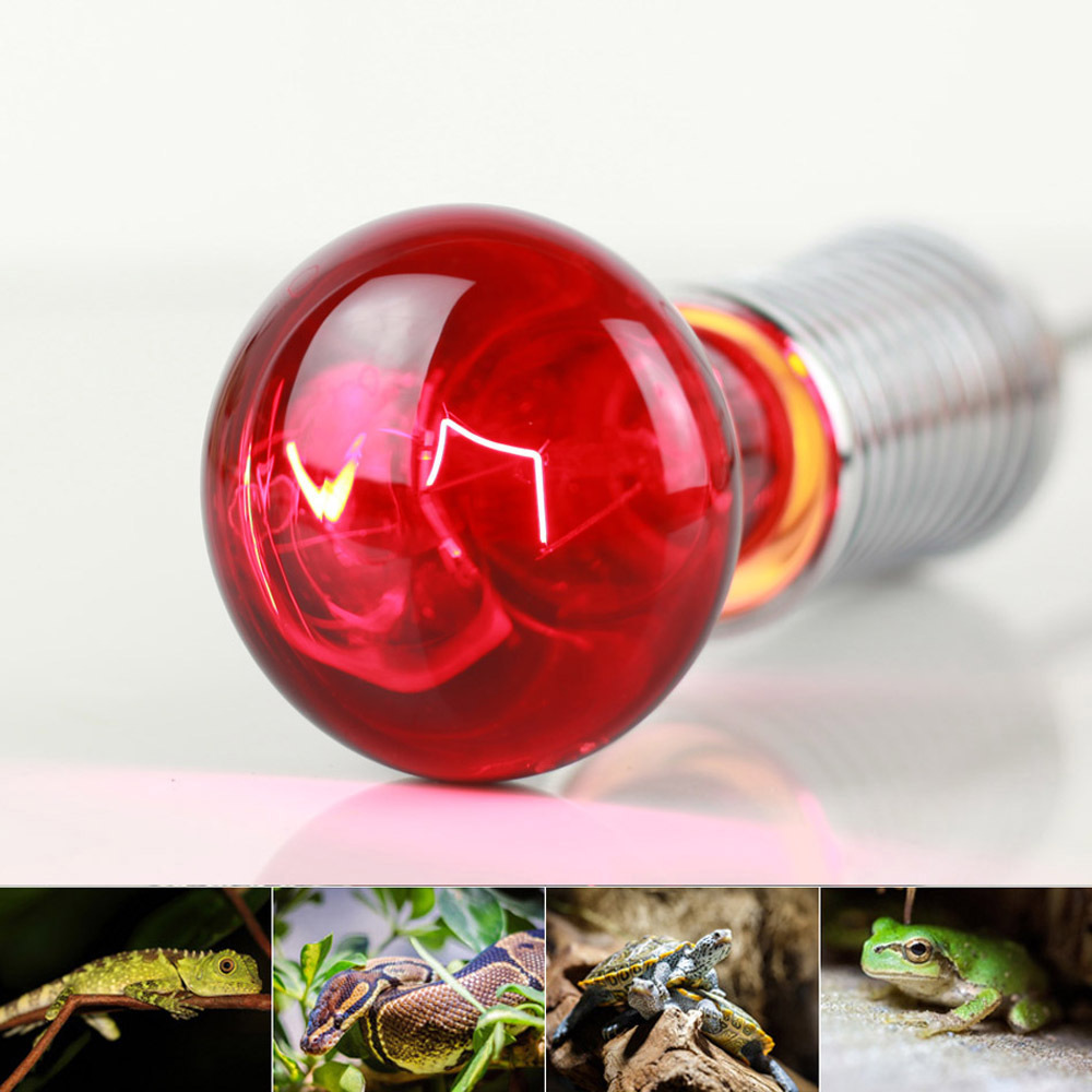 40W Pet Infrared Heating Light Bulb for Reptile  E27 200-240V