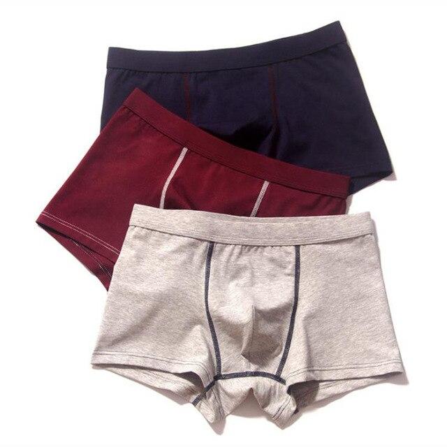 2pcs/lot Men Underwear Cotton Panties 4XL Cueca Hombre Calvn Boxer Underwear Men Brand Underpants Boxer Shorts 365 Mens Trunks