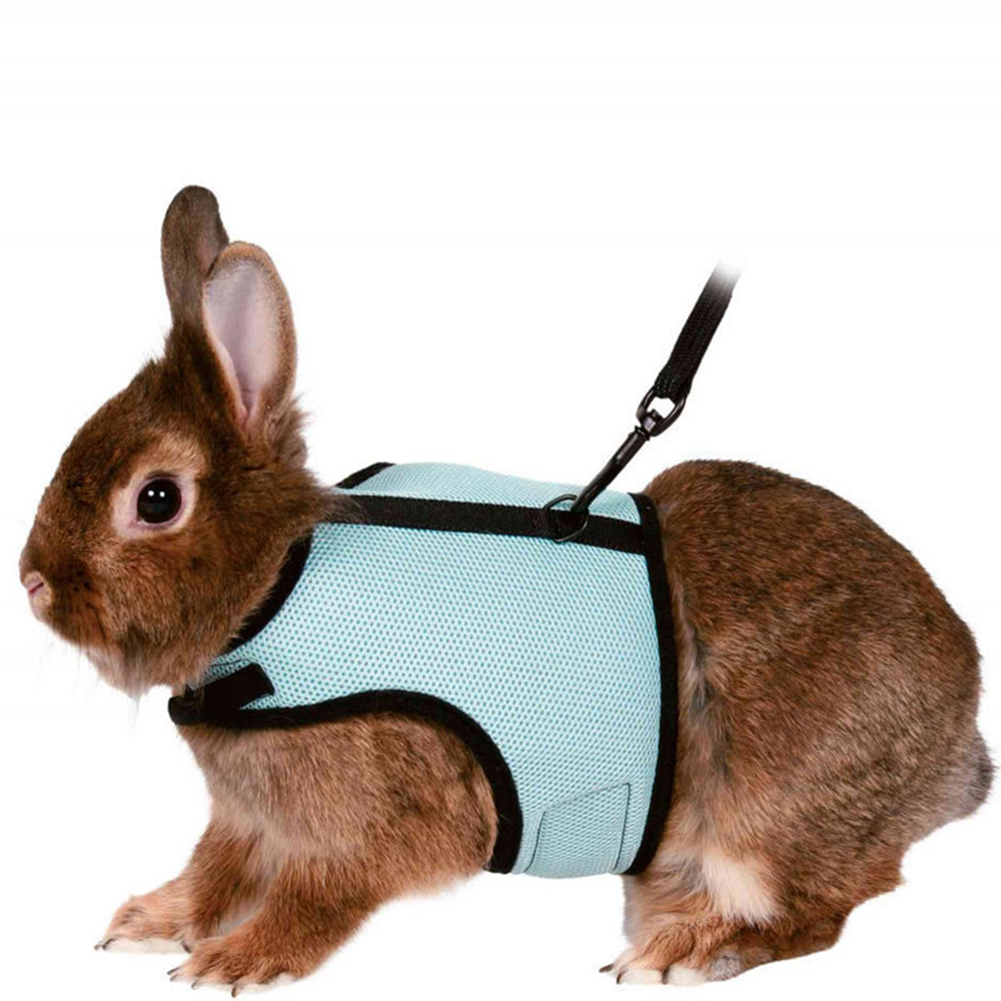 Leash Rope Nylon Vest-style Chest Pet Walking Rope For Squirrel Hamster Guinea Pig blue