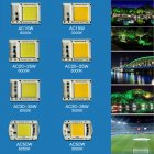 [Indonesia Direct] 15W/20W/30W/50W LED Drive-Free COB Chip Lamp 220V 50W warm light