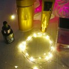 10M 100LEDs Copper Wire String Lamp for Decoration Warm white light