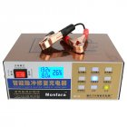 12V/24V Electric Car Battery Charger US Plug
