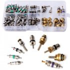 134Pcs R134A A/C Car Auto Air Conditioning Valve Core for Car Tire