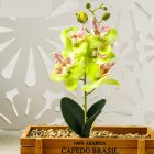 1PC Artificial Phalaenopsis Flower Home Decoration DIY Supplies Accessories Green JH1406