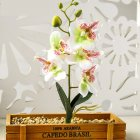 1PC Artificial Phalaenopsis Flower Home Decoration DIY Supplies Accessories White JH1408