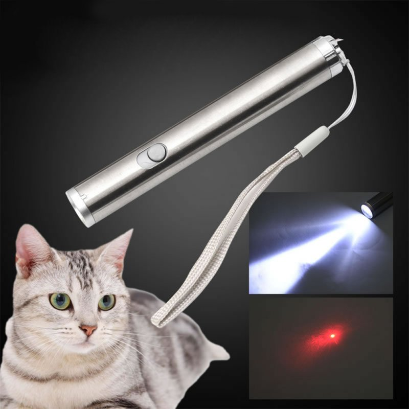 2 in 1 Red Laser Flashlight Cat Teaser Toy