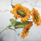 3 Heads Sunflower Artificial Flowers Bouquet Home Wedding Decor DIY Crafts Orange_63cm
