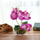 3-branch Simulate Butterfly Orchid with Flowerpot Potted Artificial Plant Home Garden Office Decoration purple