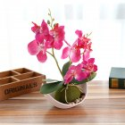 3-branch Simulate Butterfly Orchid with Flowerpot Potted Artificial Plant Home Garden Office Decoration rose Red