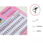 3D Curl Fake Individual Cluster False Eyelash Lashes Extension 8-14mm 0.15 thickness C roll 14mm