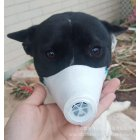 3pcs Dog Face Mouth Mask Soft Pet Respiratory Filter Anti Dust Gas Pollution Anti-fog Haze Masks White_L