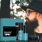 4Pcs/set Beard Growth Kit Hair Growth Enhancer Thicker Oil Nourishing Essence Leave-in Conditioner Beard Care with Comb 4-piece set