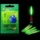 Night Fishing Luminous Float Light