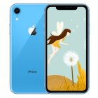 Apple iPhone XR RAM 3GB blue_64GB