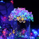 7M 50LEDs Cute Peach Blossom Shape Waterproof Solar String Light Lawn Lamp Color light_(ME0003903)