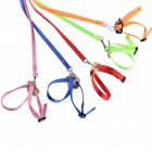 8 Shape Flying Training Rope Pet Leash for Parrot Bird Hamster Tortoise Lizard red