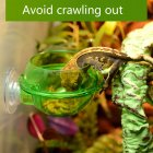 Anti-escape Lizard Chameleon Food Bowl