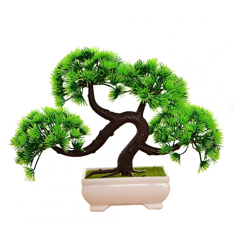 Wholesale Tree Plant Home Desktop Decoration From China