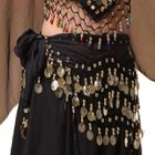 Belly Dance Indian Dance Body Chain Belt 128 coins Waist Chain for Stage Performance black One size
