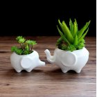Ceramic Flower Pot Elephant Shape White Big