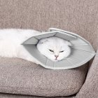 Collar Dog Cat Recovery Anti-Biting Ring Headgear for Protective Wound Pet Supplies gray_S