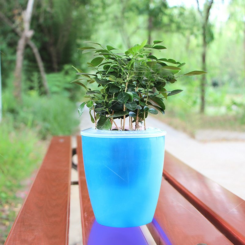 Colorful Self Watering Round Planter Flower Pot Home Garden Decor Professional Green Plant Vase Translucent blue_Small (M4)