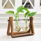 Creative Plant Glass Hydroponic Container Terrarium Desk Decor with Wood Stand Flower Pot Home Decoration 2 glass balls