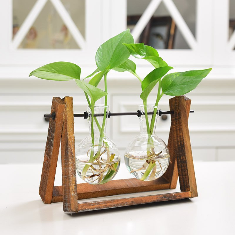 Hydroponic Container Terrarium Desk Decor