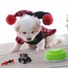 Cute Pet Halloween Cartoon Clown Joker Costume for Pet Dog Teddy Cat Autumn Winter Wear Black red_XL