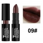 Dark Lipstick White Nude Color Vampire Olive Green Black Purple Halloween Retro Creative Makeup 9# aunt color