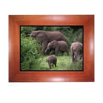 10.4-inch LCD, Digital Photo Frame(wood), Built-in 512MB Flash
