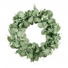 Double Color Eucalyptus Garland Green Plant Decoration Round Artificial Flower Wreath Door Living Room Decor B