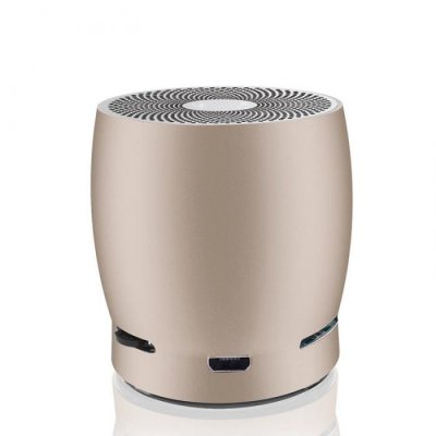 EWA A1 Wireless Bluetooth Speaker Gold