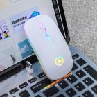 Ergonomic Wireless Mouse Rechargeable Silent LED Backlit Portable Cute Mini Mouse Works for PC Computer White
