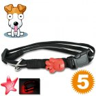 Find your canine friend in the dark with this LED dog collar  Brought to you by Chinavasion   the leader in China Electronics