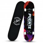 Four-wheel Skateboard Double Rocker Printed  Skate  Board For Beginners Colorful