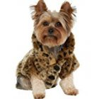 Generic Luxury Pet Dogs Coat Leopard Faux Fur Jacket Winter Clothes  M